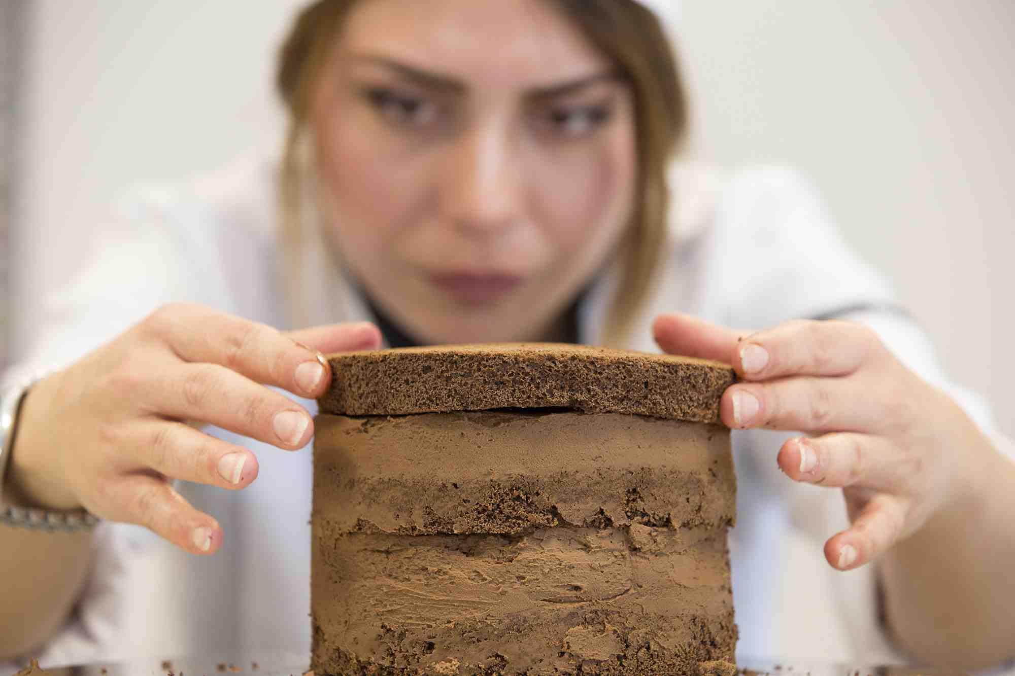 Profesyonel Pastacılık Eğitimleri/Artisan Pastacılık Üretim ve Sunum Teknikleri