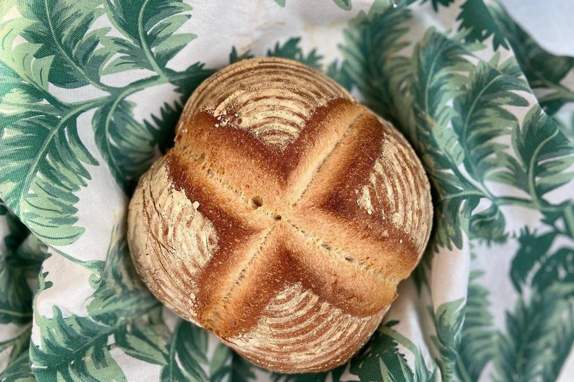 Profesyonel Ekmekçilik Eğitimleri/Kahvaltılık Special Ekmek Çeşitleri